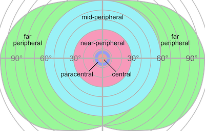 Fig. 2 — Human vision fields and degree. — Courtesy of Wikipedia.